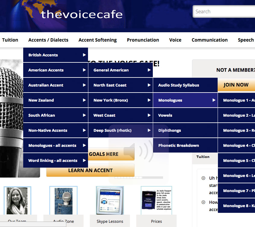 The Voice Cafe - Skype Accent Coaching, Accent Training, English